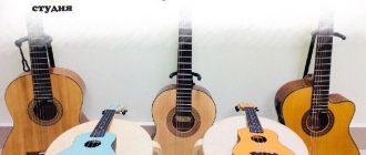 Укулеле или гитара, что выбрать?
